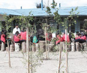 Patio Vivo, Cunco, Araucanía, clases en el patio escolar