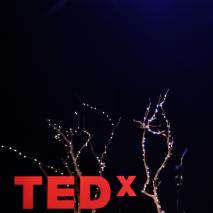 Juguemos al aire libre, creemos un paisaje de aprendizaje. | Angela Ibáñez | TEDxElArrayán